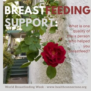 breastfeeding support person - one quality - 8 3 2016