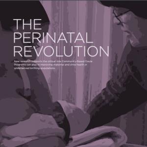 perinatalrevolution-cover-sq