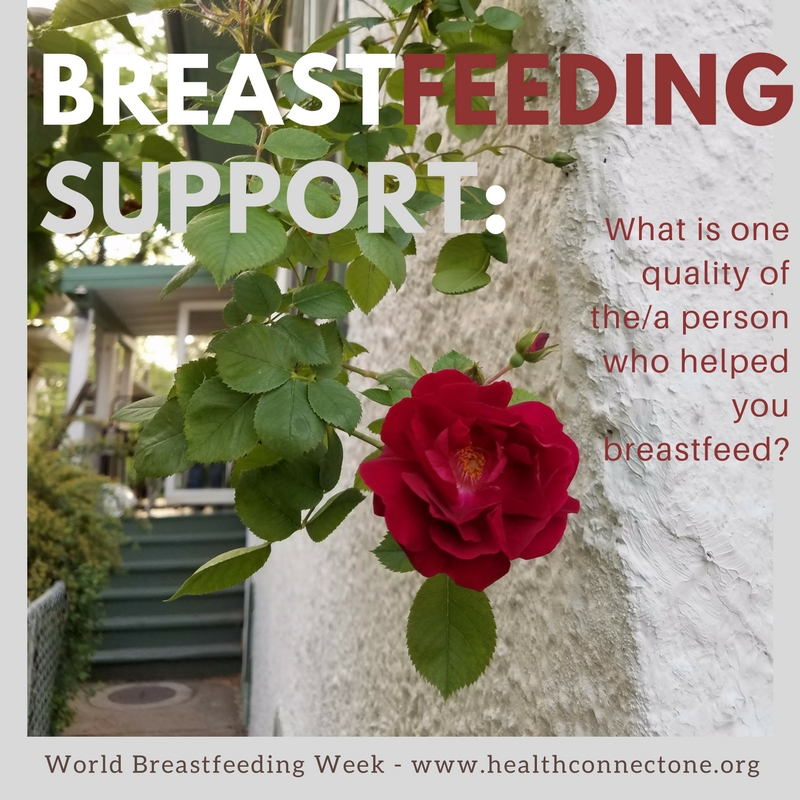Word Art on who provides breastfeeding support